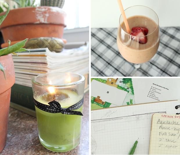 candle-smoothie-garden